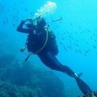 Minidiver