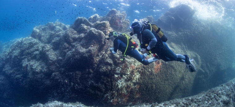 Je ne voyage pas seule, je rends visite à mes amis plongeurs !