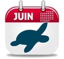 Où plonger en Juin ?
