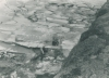 Alfeld1979