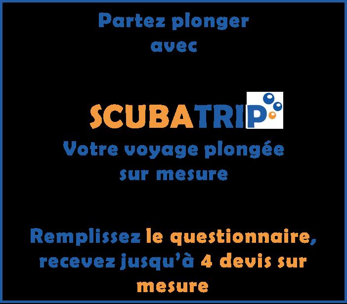 bloc Scubatrip